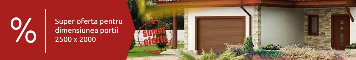 Porti-de-garaj-banner